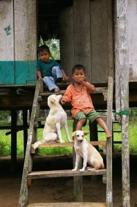 copii cu catei