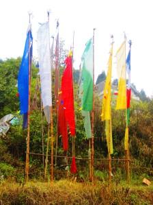 steaguri animate de spiritul copiilor