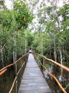 un pod lung şi misterios