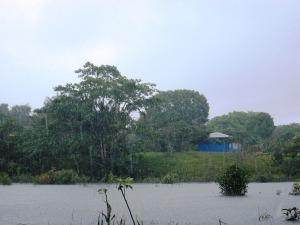 plouă cu spume